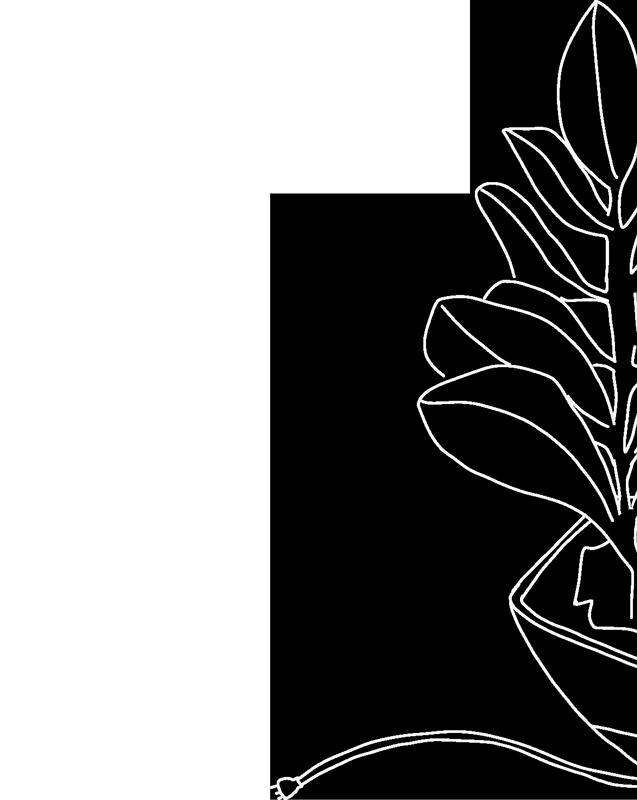 Tech Studio branding image