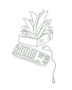 Fern illustration with a computer keyboard and mouse