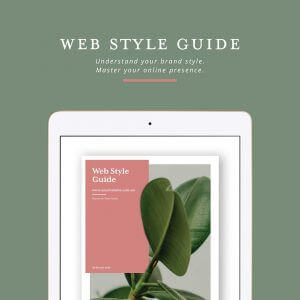 Web stye guide cover